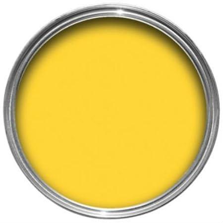 Sandtex 10 Year Exterior Hot Mustard Gloss Paint 750ml: Amazon.co.uk on zinsser exterior paint, dulux exterior paint, glidden exterior paint, gloss exterior paint, crown exterior paint, satin exterior paint, fired earth exterior paint, weathershield exterior paint, rust-oleum exterior paint,
