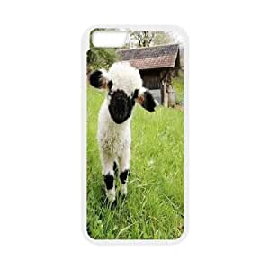 """Custom Sheep Back Case for iPhone 6 pluS 5.5"""", Personalized Sheep Iphone6 5.5"""