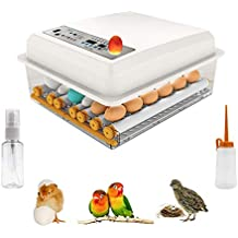 Mein LAY 18 Mini Egg Incubator Digital Automatic Hatcher with Egg Turning for Chickens Ducks Goose Birds