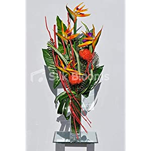 Silk Blooms Ltd Artificial Orange Pincushion Protea and Bird of Paradise Floral Arrangement w/Striped Leaves and Mitsumata