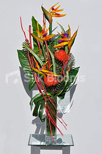 Silk-Blooms-Ltd-Artificial-Orange-Pincushion-Protea-and-Bird-of-Paradise-Floral-Arrangement-wStriped-Leaves-and-Mitsumata