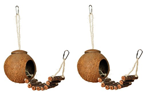 2 X Prevue Hendryx 62801 Naturals Coco Hideaway with Ladder Bird Toy by Prevue Hendryx