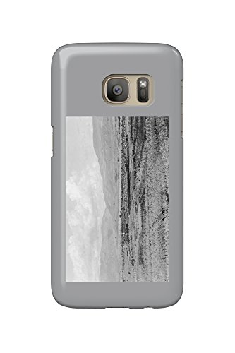 Wenatchee, WA Town View and Orchard Photograph (Galaxy S7 Cell Phone Case, Slim Barely - Town Orchard