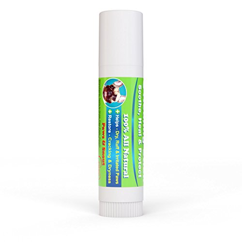 dog-healing-balm-for-paws-and-snout-all-natural-aloe-vera-tea-tree-oil-cocoa-butter-and-coconut-oil-