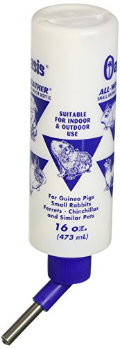 Kordon Oasis #80610 All Weather Water Bottle for Guinea Pig, 16-Ounce
