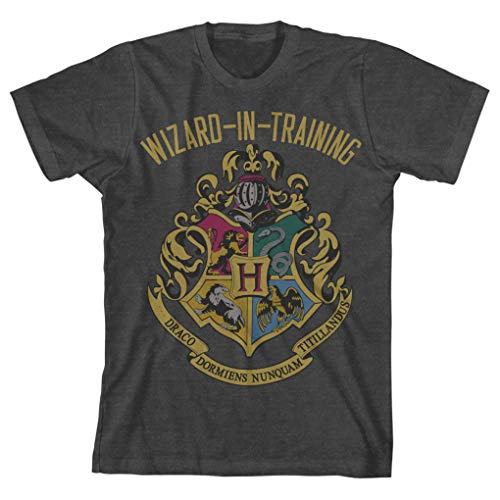 (HARRY POTTER Boys Wizard in Training Navy Heather Tee (Large, Charcoal Heather))