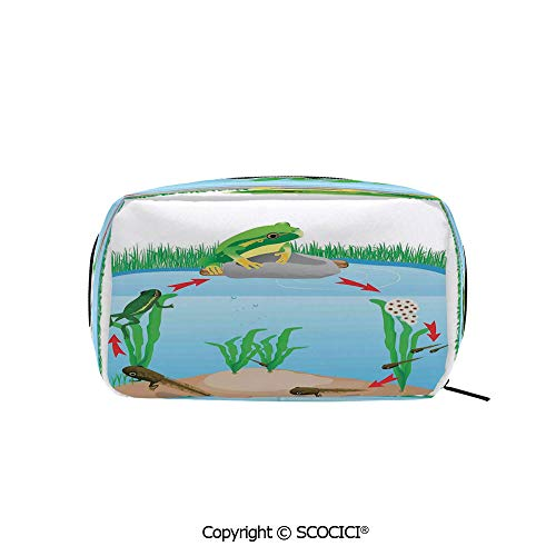 Rectangle Beauty Girl And Women Cosmetic Bags Life Cycle of Tropic Tree Frog Presents with Aquatic Elements Evolution in Nature Printed Storage Bags for Girls Travel