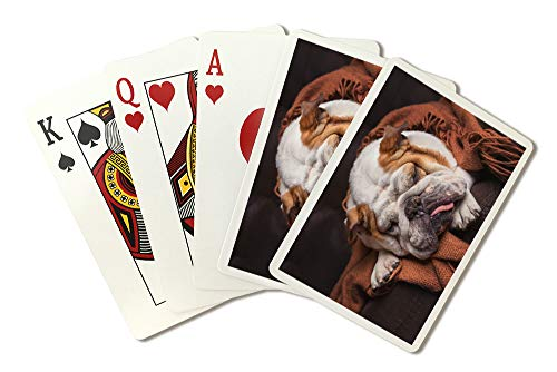 English Bulldog Sleeping on Couch Photography A-90753 (Playing Card Deck - 52 Card Poker Size with Jokers)