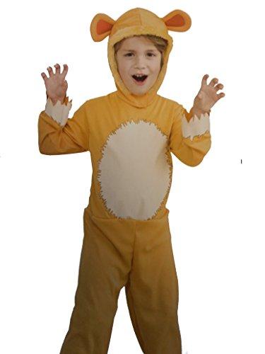 Lion King Dress Up Costumes (Lion Costume Set)