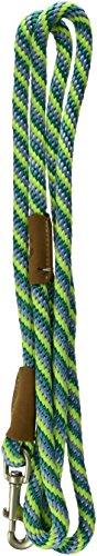 Mendota Dog Products Snap Leash, 1/2-Inch by 6-Feet, Twist Sea Foam