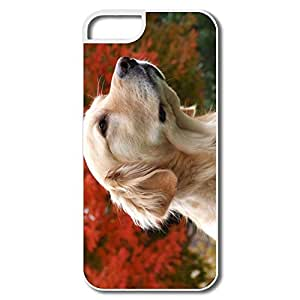 IPhone 5/5S Covers, Dog Golden Retriever White Cover For IPhone 5 BY icecream design