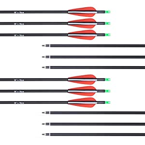 ANTSIR Outdoors Carbon 30-Inch 7.8mm Shaft Removable Arrows with Field Points Replaceable Tips for Recuve & Compound Bow(Pack of 12)