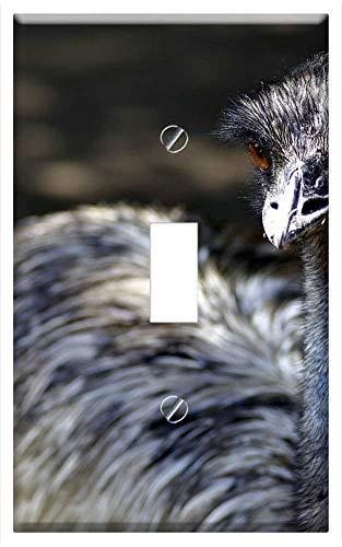 - Switch Plate Single Toggle - Emu Ostrich Bird Beak Pen Zoo Feathers Feb