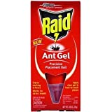 Raid Ant Gel Up To 1 Month 1 Oz
