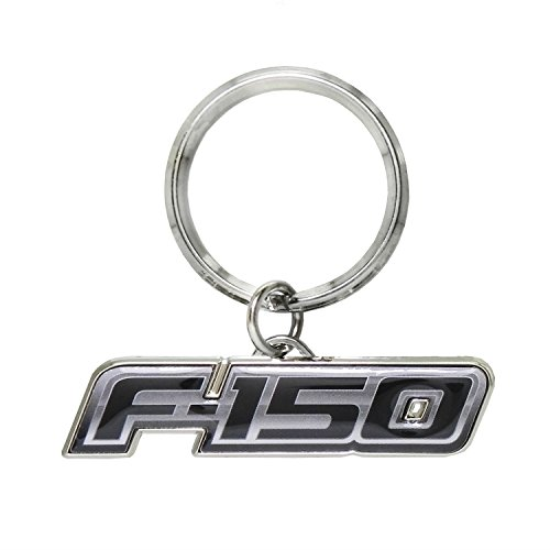 Ford F-150 Logo Metal Key Chain, Key Charm, Keychain by iPick Image (Ring With Images)