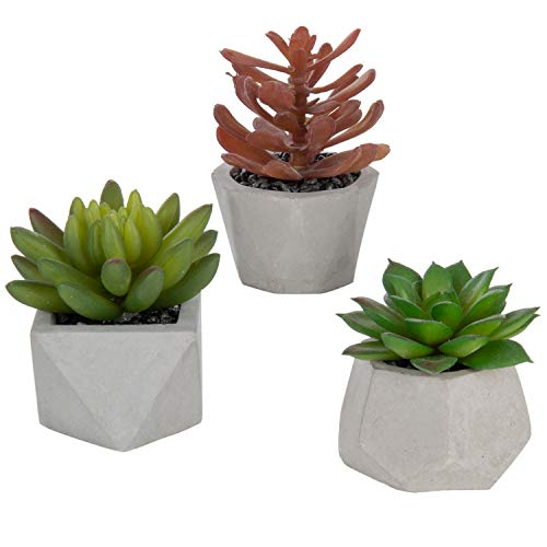 (MyGift Modern Assorted Faux Succulents in Geometric Cement Planters, Set of 3 (Assortment 2))