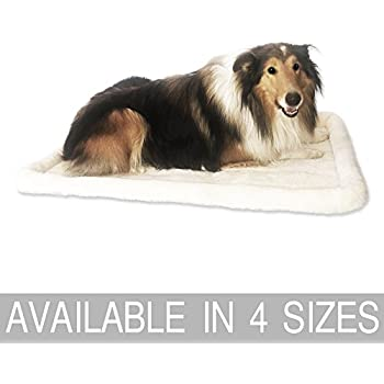 Compare Best Price For Large Dog Beds Free Shipping