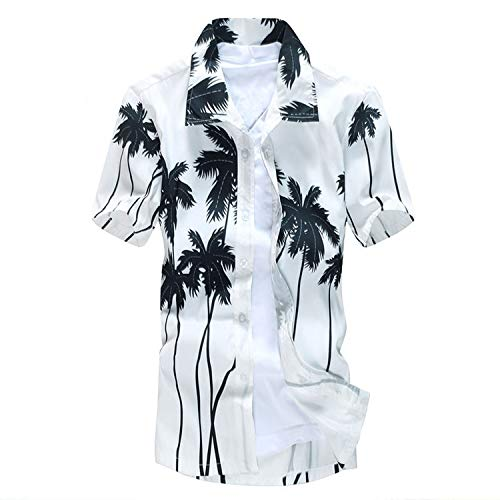 - Wind House Mens Board Shorts & Beach Shirt Summer Swimwear Surf Swimming for Men Board Shorts Sports Suits,White,4XL