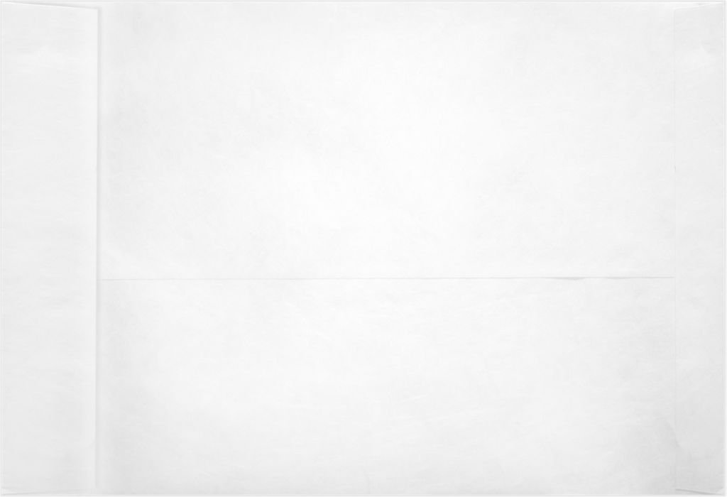 6 x 9 Open End Envelopes - 11lb. Tyvek (250 Qty) | Perfect for mailing Documents, Catalogs, Direct Mail, Promotional Material, Brochures and More | PC1101PL-250 Envelopes.com