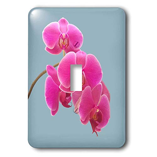 Orchid Photograph - 3dRose Natalie Paskell - Flora and Fauna - Pink orchids photograph in paint effect. - Light Switch Covers - single toggle switch (lsp_293377_1)