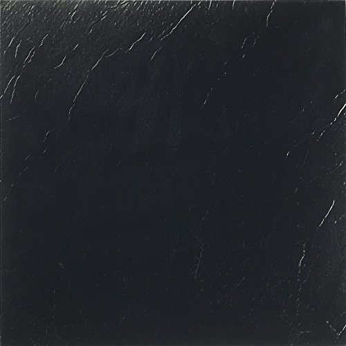 Park Avenue Collection NEXUS Black 12 Inch x 12 Inch Self Adhesive Vinyl Floor Tile #101 - 20 Tiles