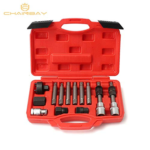 Engine Care 13 Pcs Alternator Freewheel Pulley Removal Socket Bit Set Garage Service Tool Kit -
