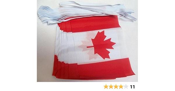 AZ FLAG Guirnalda 6 Metros 20 Banderas de CANADÁ 21x15cm - Bandera Canadiense 15 x 21 cm - BANDERINES: Amazon.es: Hogar