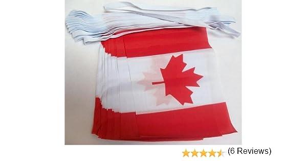 AZ FLAG Guirnalda 4 Metros 20 Banderas de CANADÁ 15x10cm - Bandera Canadiense 10 x 15 cm - BANDERINES: Amazon.es: Hogar