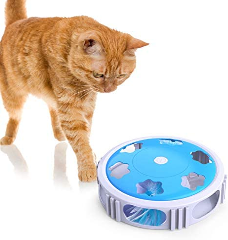 DADYPET Interactive Cat Toy, Electric Cat Toy with Bell Spinning Rotating Feather, Automatic Teaser Exercise Kitten Toy for Cat Entertainment, Training or Hunting(Battery Included) 3