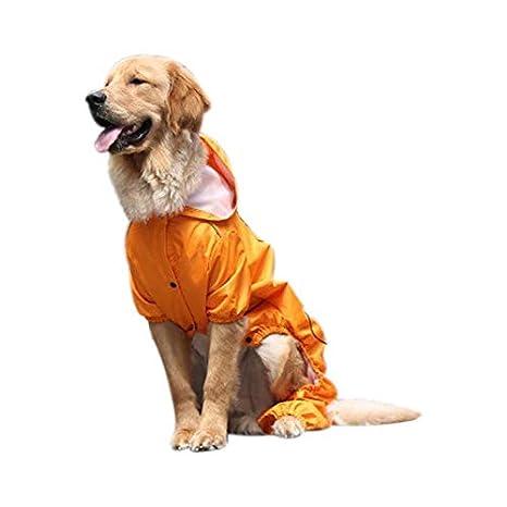 TOOGOO Gabardina para Perros Grandes Ropa para Perro ...