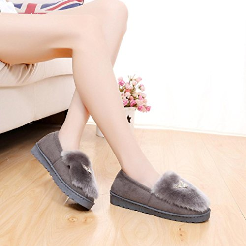 Deesee (tm) Bowknot Chaud Femmes Appartements Chaussures Neige Femmes Automne Hiver Chaussures Mode Gris