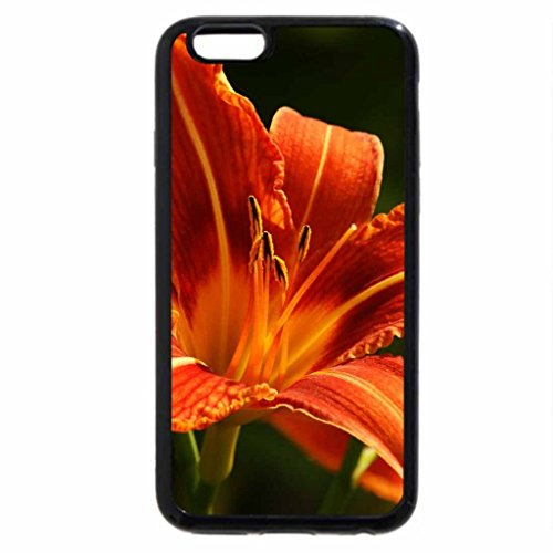 iPhone 6S / iPhone 6 Case (Black) Orange Lilly