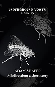 Misdirection by [Shafer, Adam]