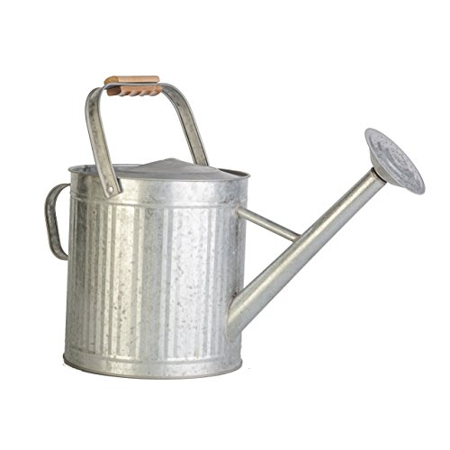 Panacea 086082 Watering Can
