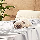 "LivHeart Premium Nemu Nemu Sleepy head Animals Body Pillow Beige Plush Dog Pug 'Hana' size M (22""x9""x5"") Japan import 48769-32 Huggable Super Soft Stuffed Toy"