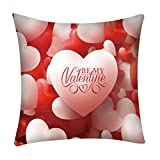 Mome Square PillowcaseRomantic Decoration Polyester Cushion Cover 18 x 18 Inch,Decor Outdoor Square Throw Cushion Cover Cushion Case for Living Room Sofa Bedroom Car (D)