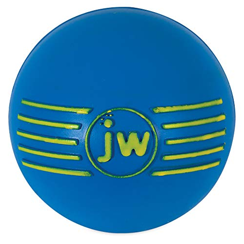 Jw Pet Company Dog Chew Toy - JW Pet Company iSqueak Ball Rubber Dog Toy, Medium, Colors Vary