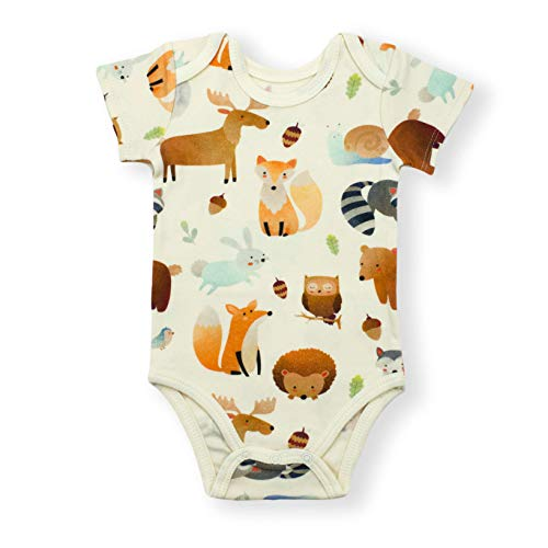 Earthy Organic Baby Short Sleeve Bodysuit Boy Girl (8 Sizes: Preemie-24M) 100% Organic Cotton (9 Months, Wren Short SLV)