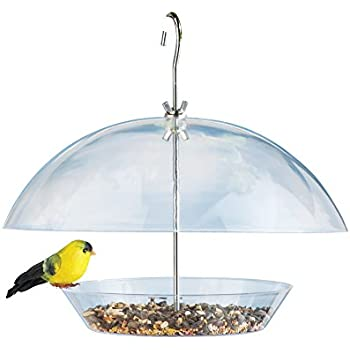 a small hanging bird s wild flat feeders here feeder pictures