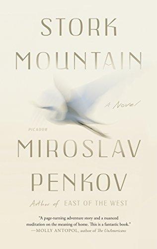 Stork Mountain: A Novel