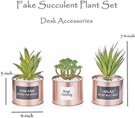 Artificial Succulent Plants for Women Desk – Fake Succulent Plant Set – Office Decor Faux Succulents in Rose Gold Pots – Mini Succulent Decor for Bedroom Bathroom Bookshelf Dorm Accessories 3-Pack 41TPxRv 2BVFL