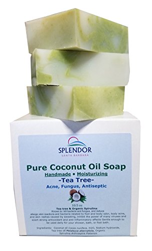 Tea Tree (10.5 oz) Pure Coconut Oil Soap with ORGANIC SPIRULINA. Handmade, Vegan, All Natural, Moisturizing, With AAA+ Therapeutic-Grade Australian Essential Oil (Coconut Oil Soap Bar)
