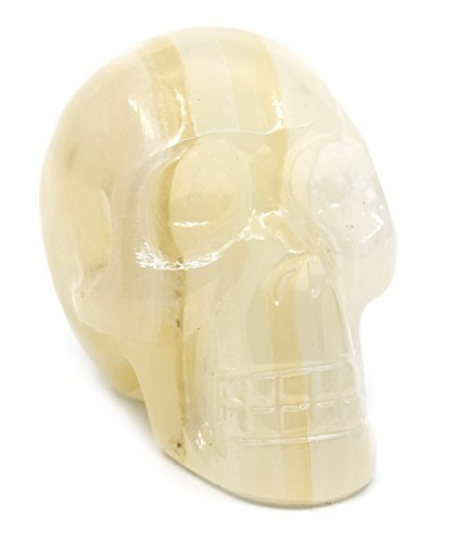 "White Onyx Aragonite Skull Figure, 2.5"" Tall, 2.75"" Long, 2"" Wide (0.7lb), Carved from Real North American White Onyx Aragonite - The Artisan Mined Series by hBAR"