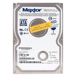 Maxtor 250GB 7,200RPM SATA HDD (7Y250MO) -