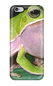 Forever Collectibles Frog Hard Snap-on Iphone 6 Plus Case