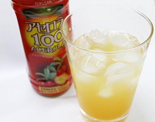 Acerola 100 (100% fruit juice) 500mlX24 this
