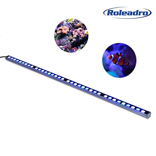 Reef Fish Tanks (Roleadro 108W LED Reef Aquarium Light, Blue and White Led Fish Tank Coral Light for Saltwater and Freshwater 45 inch)
