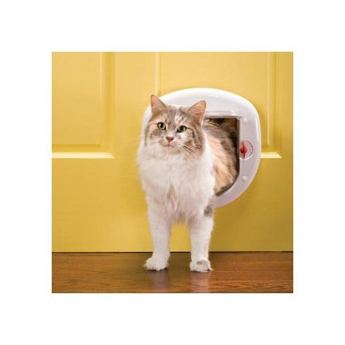 PetSafe Big Cat Cat Flap 41TQYPPCdJL