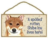 (SJT61965) A spoiled rotten Shiba Inu lives here wood sign plaque 5
