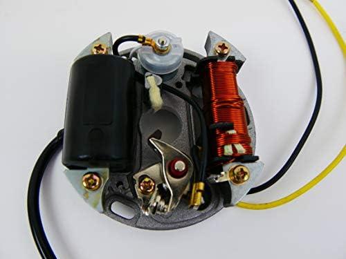 Lichtmaschine 6v 17w Zündung Für Puch Kreidler Sachs Zundapp Ktm Auto